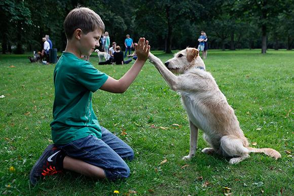 Kinderkurs Hundeschule Hamburg